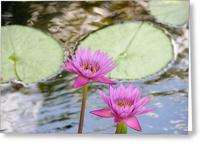Lillies Greeting Card by Herman Boodoo