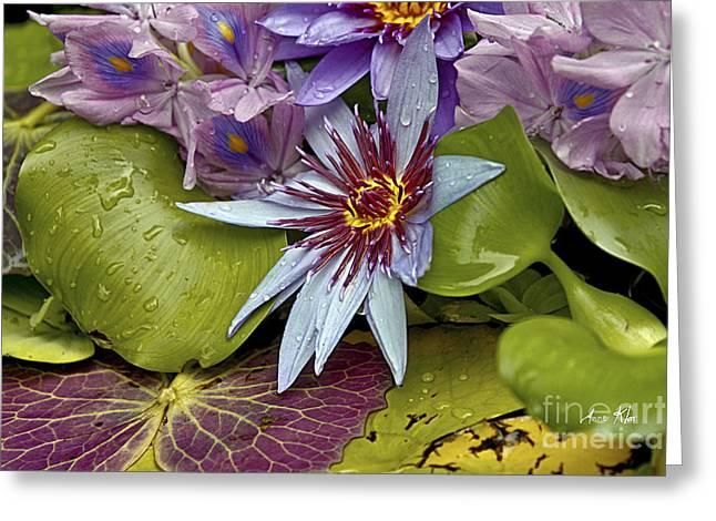 Lillies No. 9 Greeting Card
