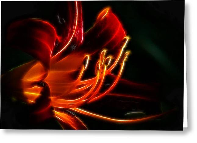 Lily Flame Greeting Card by Joetta West