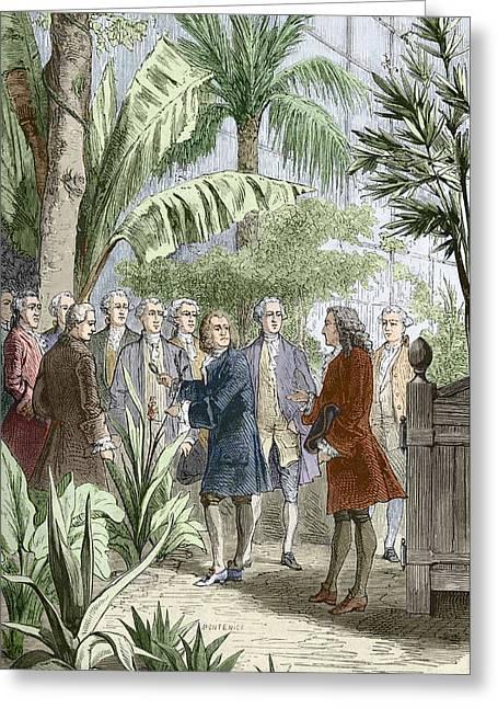 Linnaeus And De Jussieu, Botanists Greeting Card