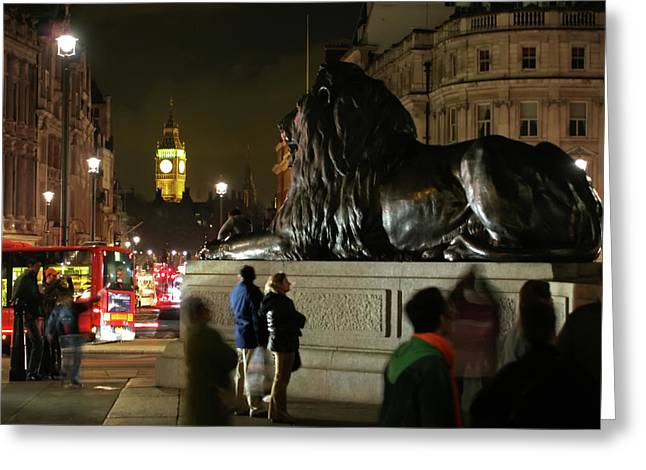 Greeting Card featuring the photograph Lion An Ben by Pedro Cardona