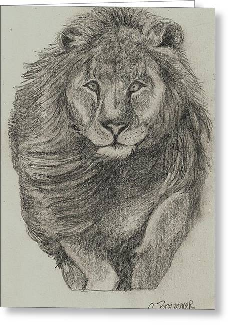 Greeting Card featuring the drawing Lion by Christy Saunders Church