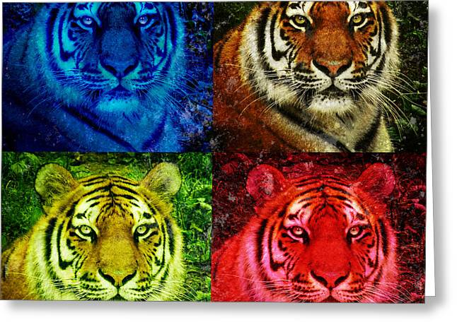 Lion Face Colored Squares Greeting Card by Angela Waye
