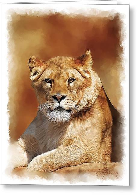 Lioness Portrait Greeting Card by Michael Greenaway