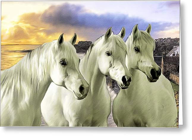 Lipizzans Greeting Card by Tom Schmidt