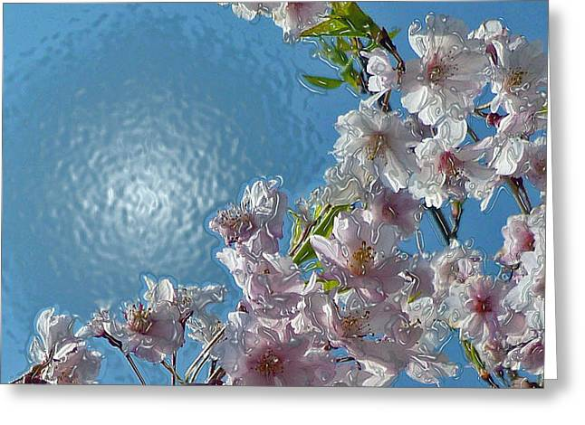 Liquid Cherry Greeting Card by Jen White