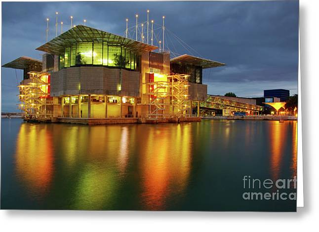 Lisbon Oceanarium Greeting Card by Carlos Caetano
