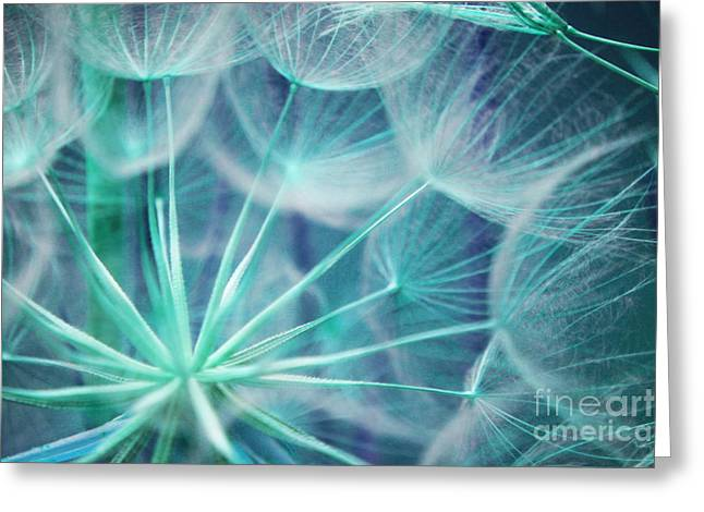 Lite From Within Greeting Card by Julie Lueders