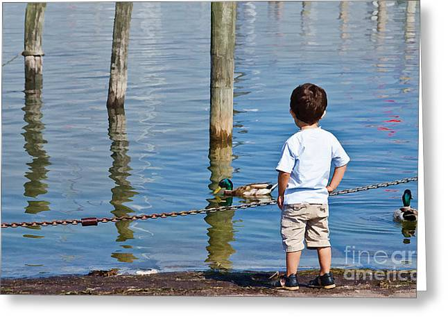 Little Boy By The Water Greeting Card