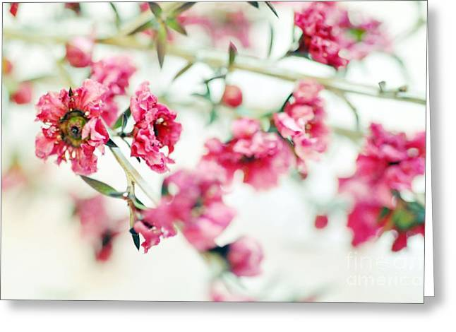 Little Dreams On Stems Greeting Card
