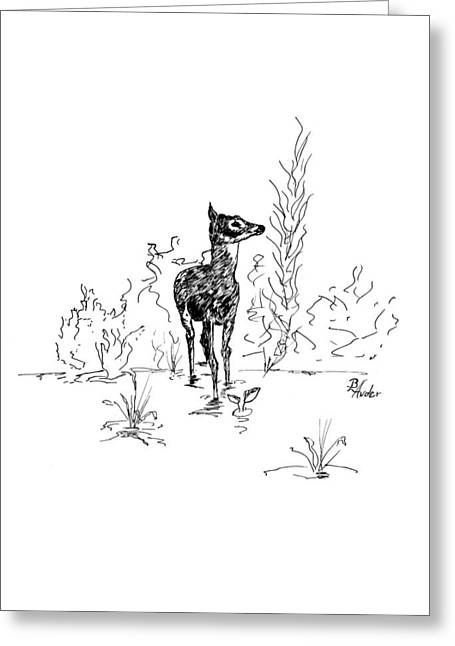 Greeting Card featuring the drawing Little Fawn by Brent Ander