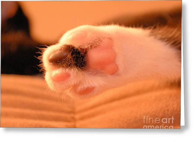 Greeting Card featuring the photograph Little Foot by Melissa Goodrich