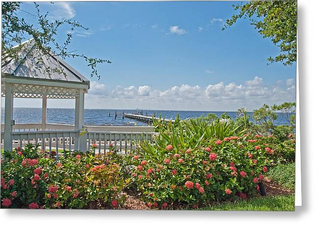Little Harbor Tampa Bay Greeting Card by John Black