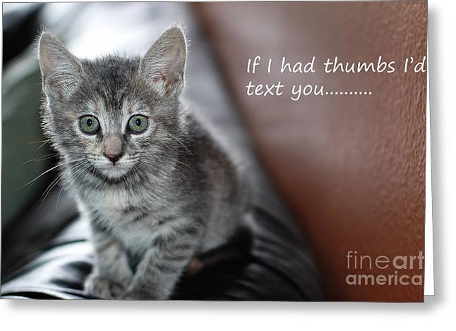 Little Kitten Greeting Card Greeting Card by Micah May