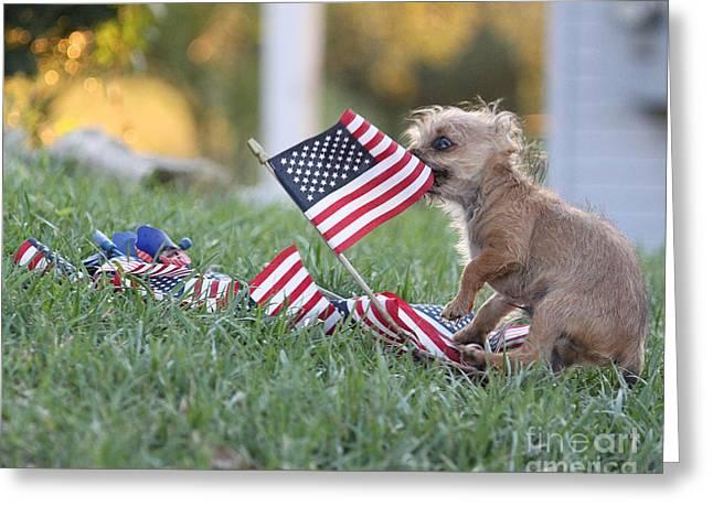 Little Patriot Greeting Card by Billie-Jo Miller