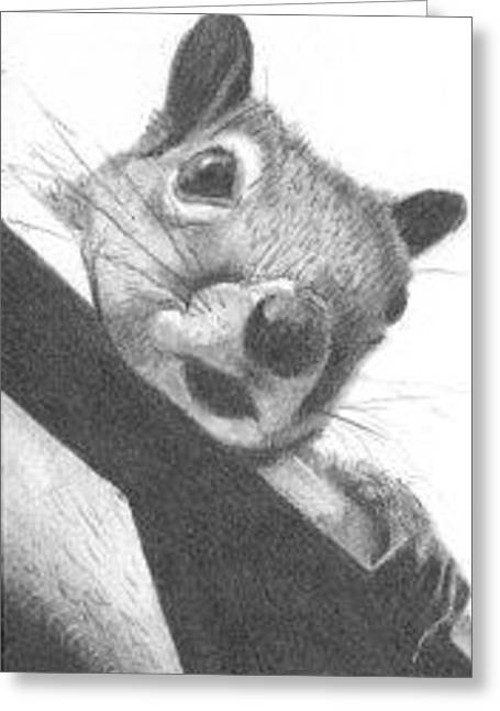 Greeting Card featuring the drawing Little Rascal - Aceo by Ana Tirolese