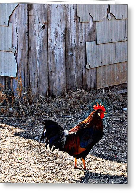 Little Red Rooster Greeting Card