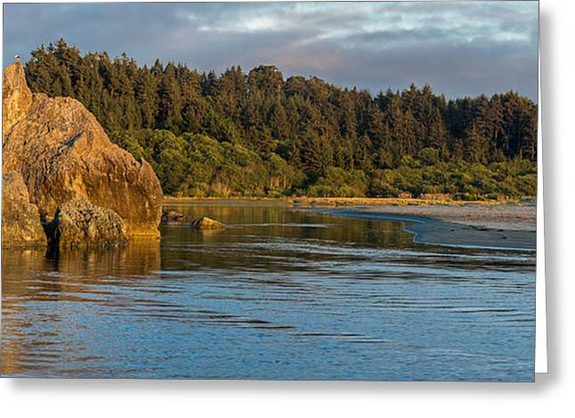 Little River Panorama Greeting Card by Greg Nyquist
