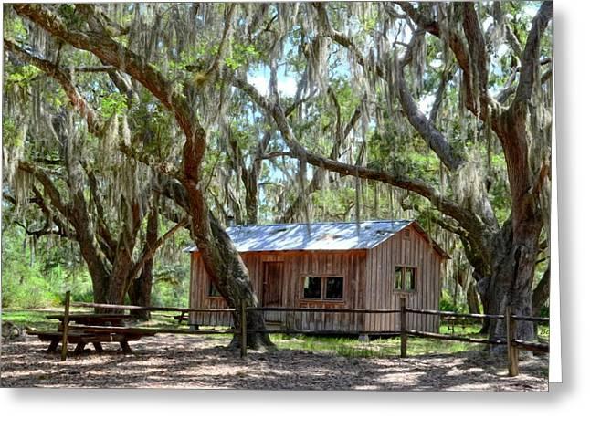 Live Oak Cabin Greeting Card