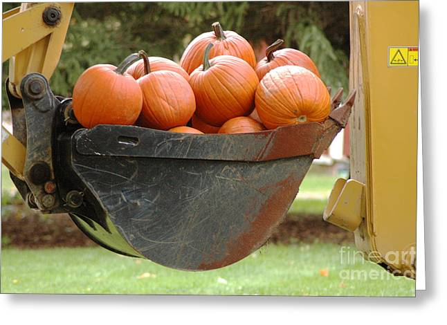 Load Of Pumpkins Greeting Card by Ginger Harris