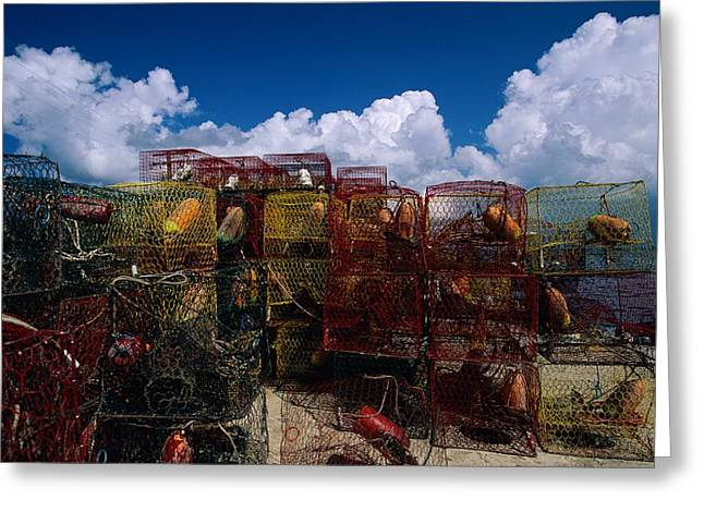 Lobster Traps Are Stacked Greeting Card by Medford Taylor
