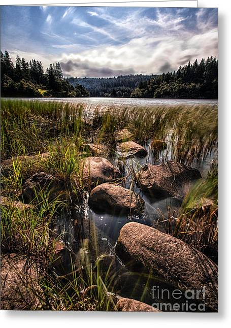 Loch Ard From The Reed Beds Greeting Card