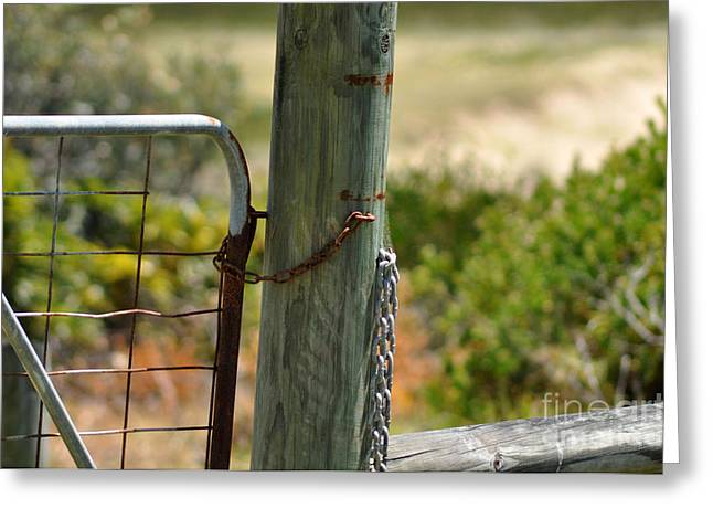 Locked Out Greeting Card by Joanne Kocwin
