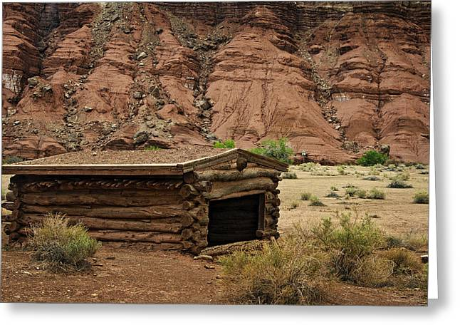 Log Cabin In The Desert Greeting Card by Dave Dilli