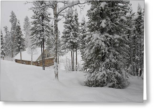 Log Cabin In Wilderness Alaska Greeting Card by Michael S. Quinton