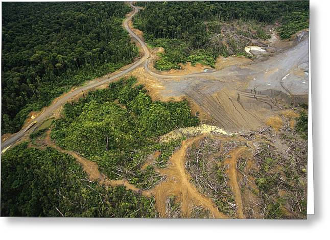 Logging Erosion In Lowland Tropical Greeting Card
