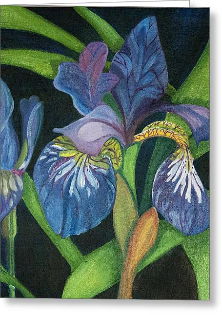 Lois' Iris Greeting Card by Amy Reisland-Speer