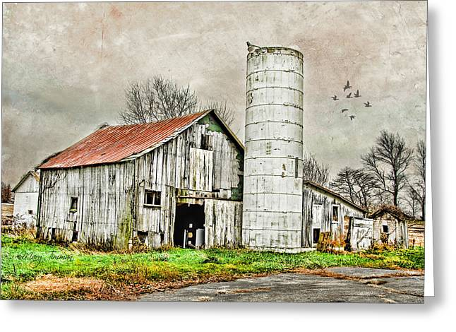 Greeting Card featuring the photograph Lone Barn by Mary Timman
