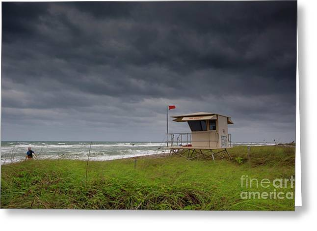 Lone Surfer Greeting Card by Keith Kapple