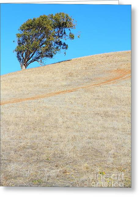 Lone Tree At Coyote Hills California . 7d10908 Greeting Card by Wingsdomain Art and Photography