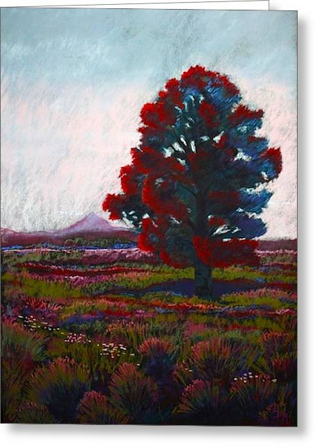 Lone Tree Greeting Card by Drusilla Montemayor
