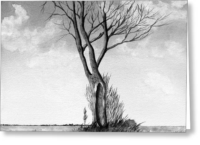 Lone Tree On The Prairie Greeting Card