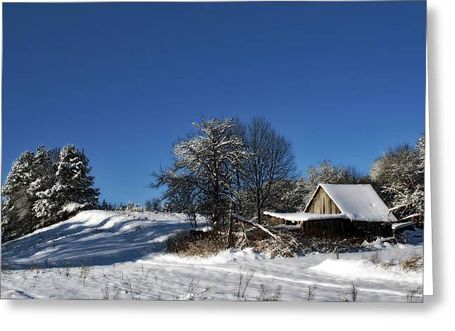 Lonely Rural Log Hut Brought By Snow Greeting Card by Aleksandr Volkov