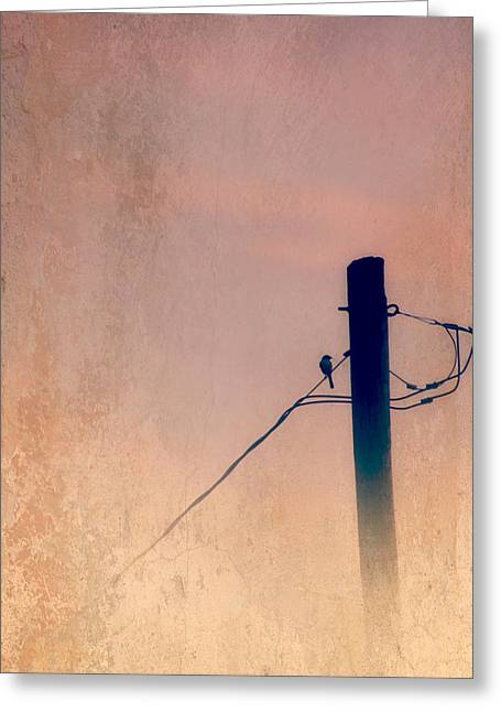 Lonely Soldier Greeting Card by Susan Bordelon