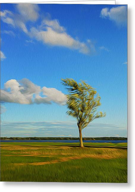 Lonely Tree. Greeting Card