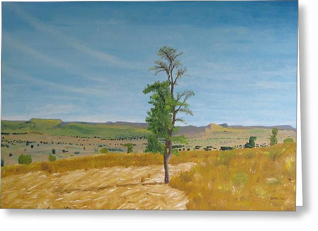 Lonely Tree In Africa Greeting Card by Glenn Harden
