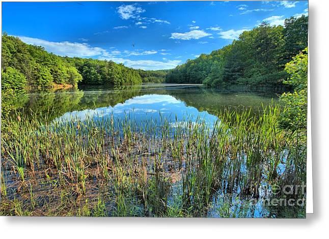 Long Branch Marsh Greeting Card by Adam Jewell