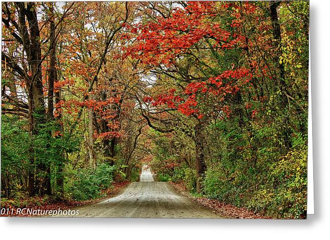 Greeting Card featuring the photograph Long Bumpy Dirt Road by Rachel Cohen