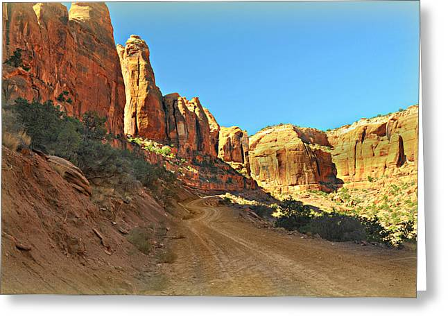 Long Canyon 1 Greeting Card by Marty Koch