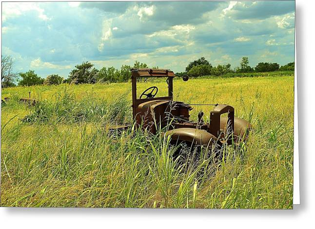 Long Days Greeting Card by Sharon Farris