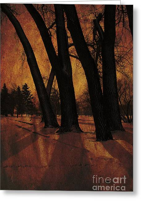 Long Shadows Greeting Card