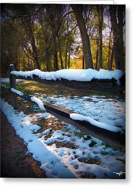 Greeting Card featuring the photograph Long Snow Fence by Michelle Frizzell-Thompson