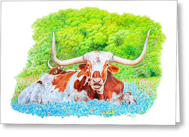Longhorns In Bluebonnets Greeting Card by Mike Ivey