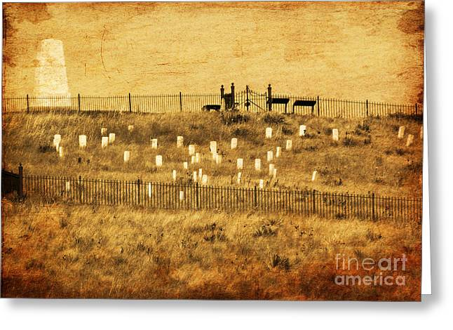 Looking At History Greeting Card by Terrie Taylor