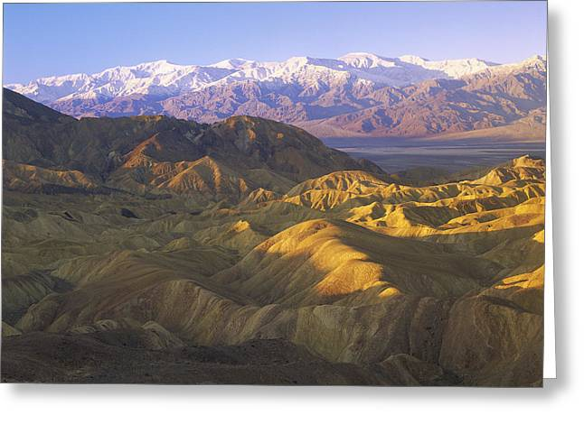 Looking At Panamint Range Greeting Card by Tim Fitzharris
