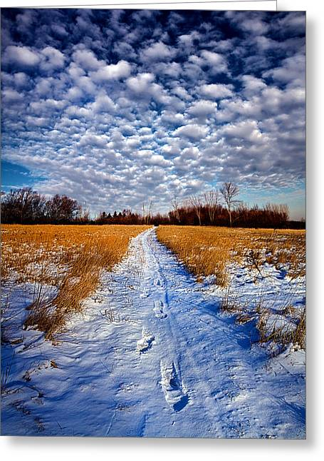 Looking Back Greeting Card by Phil Koch